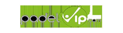 Logo Padel Vip